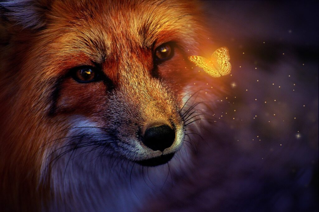 fox, butterfly, magical